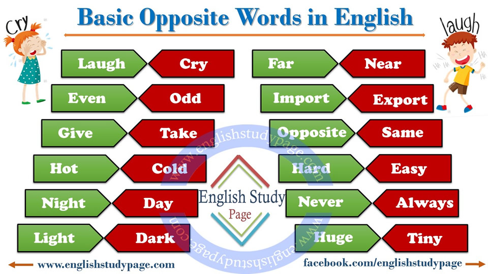Basic Opposite Words In English Study Page