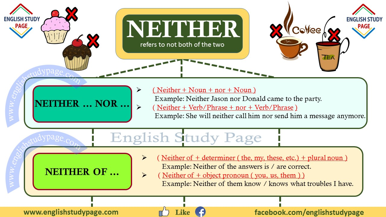 Using Neither In English English Study Page